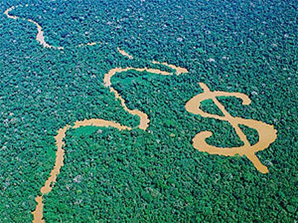 An Eco Economy?